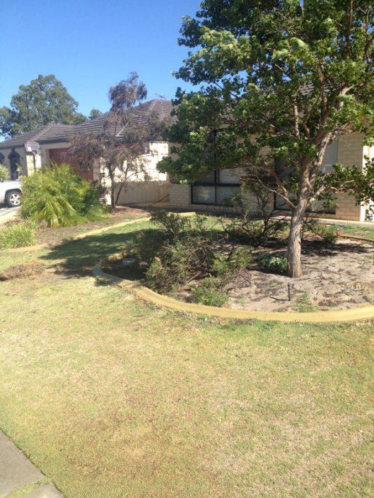 concrete edging in garden